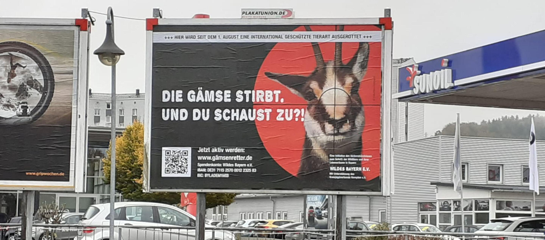 Grossflaeche_Gaemsenretter_2880x1270