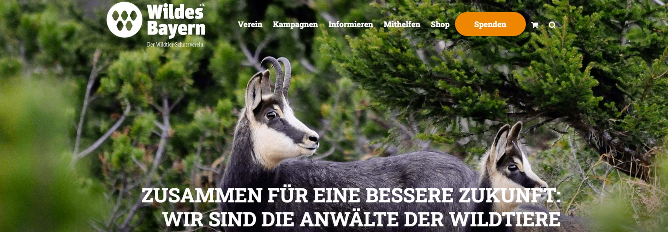 Wildes-Bayern-Header_2880x1000
